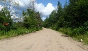 The main road in the Moose River Plains