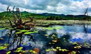 boreas pond journey
