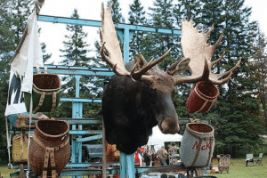 Find a wide variety of antiques at home in the Adirondacks, from taxidermy to toboggans
