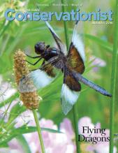 conservationist magazine