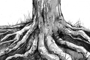 tos tree roots