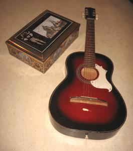 Fall Farm Tour Flip guitar