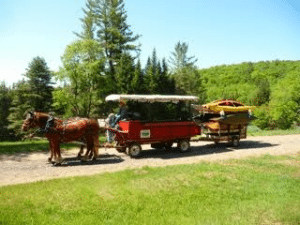 horse-and-boats