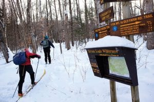 skiers-head-up-one-of-the-old-ski-trails-reopened-by-steve-ovitt