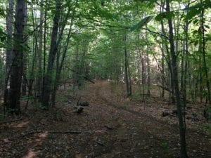 wilmington-preserve