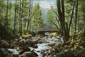 1900s postcard