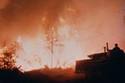 pottersville wildfire