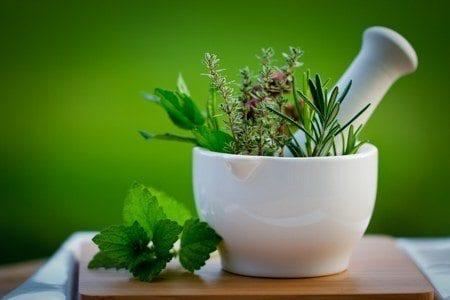 herbal remedies: ancient medicines, modern uses - - the adirondack, Skeleton