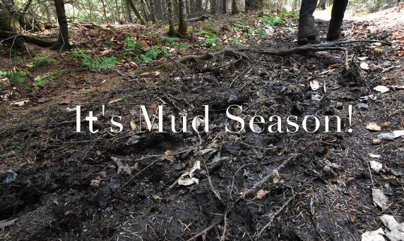 Adirondack Mud Season
