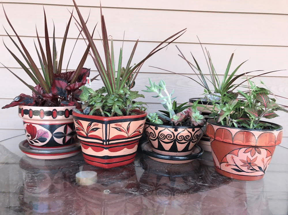 dish gardens and painted pots