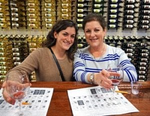 Adirondack Winery Wine Tastings