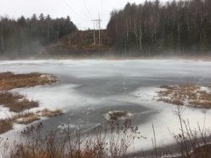 Wetland in Winter photo by Steve Langdon