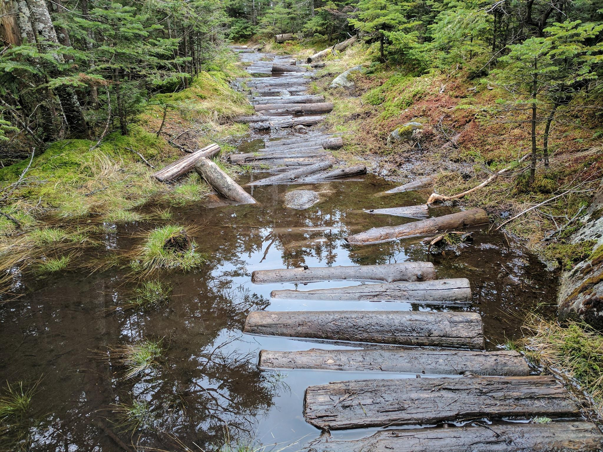 Muddy flooded Whiteface trail