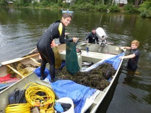 Aquatic Response Team - Invasive Milfoil Management
