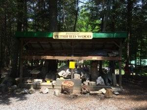 stone bridge petrified wood