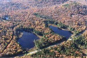 Aerial view Cat Ponds