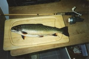 First trout, 1995