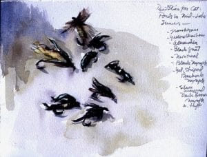 Flies for Cat Ponds, wc,7x9,1996(72)