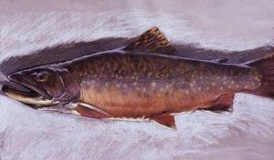 Horn Lake Strain, pastel,16x24,1973(72)