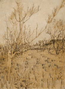 Orchard with Arles in the Background, 1888