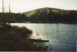 Upper Cat Pond