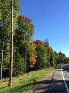 Adirondack Roadway Right-Of-Way (Peter Bauer Photo)
