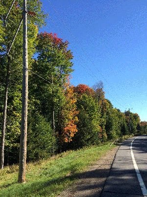 Adirondack Roadway Right-Of-Way (Peter Bauer Photo)