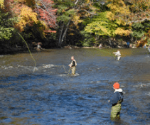fall salmon river anglers