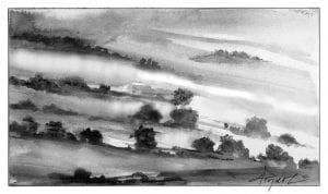 fog on maples