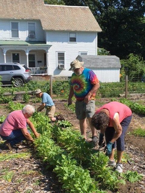 Master Gardeners working at Eastside Center in Glens Falls
