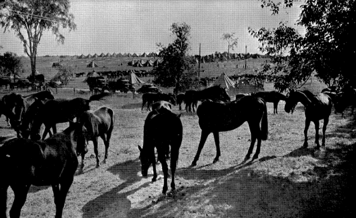 The Cavalry Camp Near Canton – St. Lawrence Co. Army Maneuvers, 1940