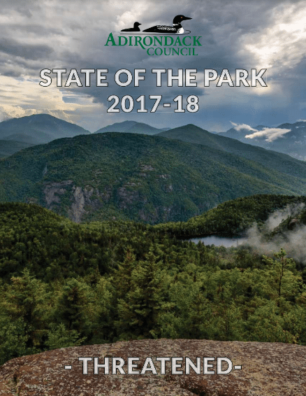 state of the park