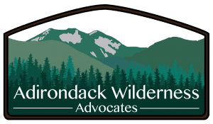 adirondack wilderness advocates logo