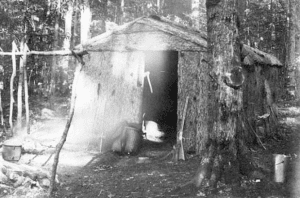 bark trappers shanty