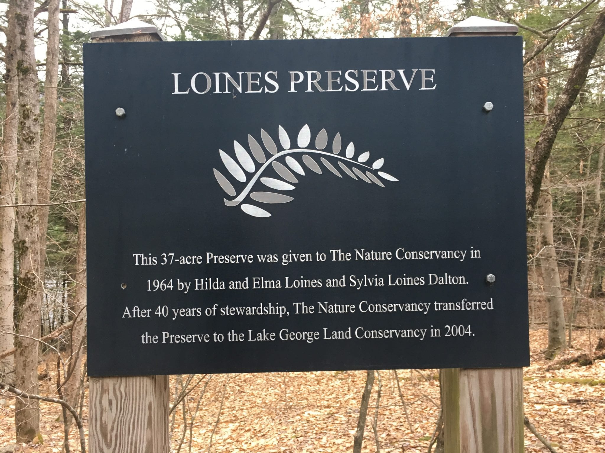 loines preserve