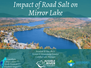 road salt on mirror lake