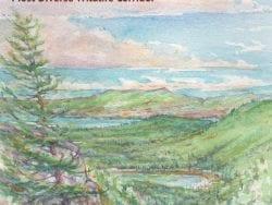 split rock wild forest book