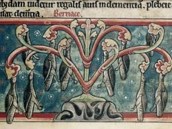 """Illustration from """"Bestiary, with extracts from Giraldus Cambrensis on Irish birds,"""" published in England during the 2nd quarter of the 13th century and held at the British Library."""
