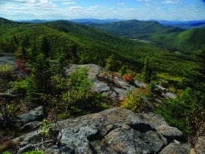 Moose Mountain overlooks the Wilcox Lake Wild Forest. Photo by Bill Ingersoll