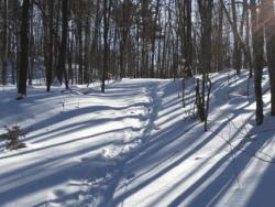 Poke-O snowshoe hike