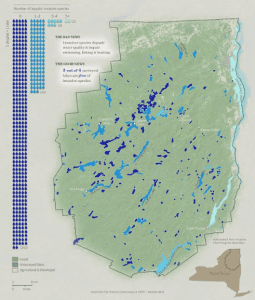 Adirondack lakes surveyed since 2002 and number of aquatic invasive species documented in each.