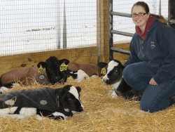 Sarah Murray checks calves bedded in deep straw and wear calf coats at Murcrest Farms in Northern New York