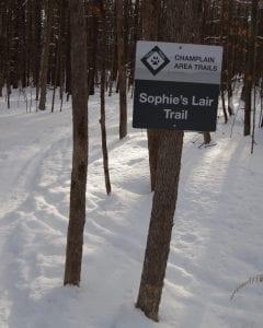 Sophie's Lair
