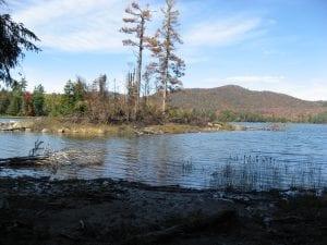 Wilcox Lake in the Adirondacks