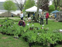 Annual Perennial Plant Sale