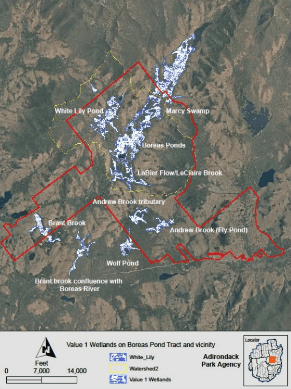 Figure 5 of the Adirondack Park Agency's Final Supplemental Environmental Impact Statement