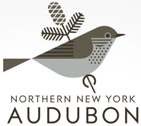 northern new york audubon