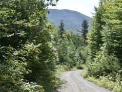 Gibson: State Rushing Process For High Peaks, Boreas Plans