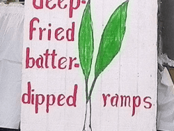 Deep fried ramps sign at Mason Dixon Ramp Fest in Mt. Morris, Pennsylvania