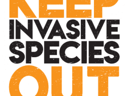 keep invasives out